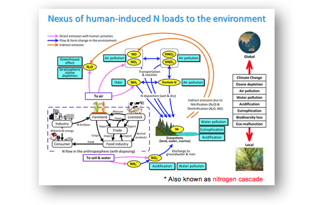 various types of environment