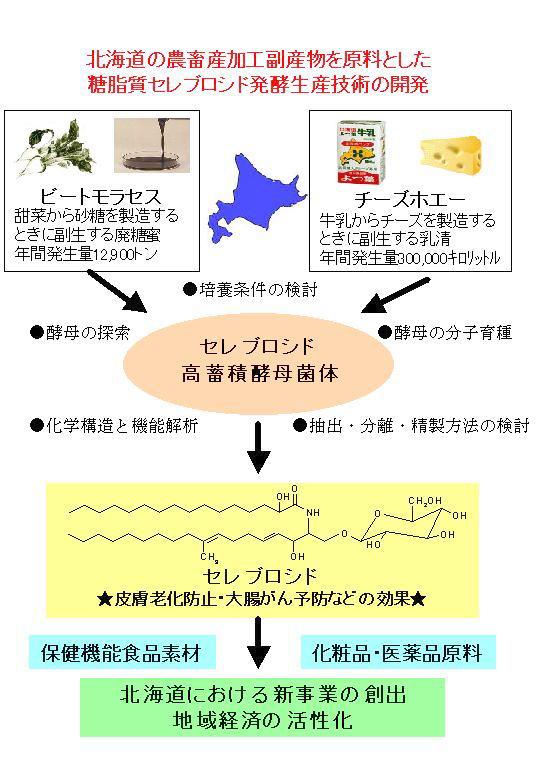 北海道の農畜産加工副産物を ...