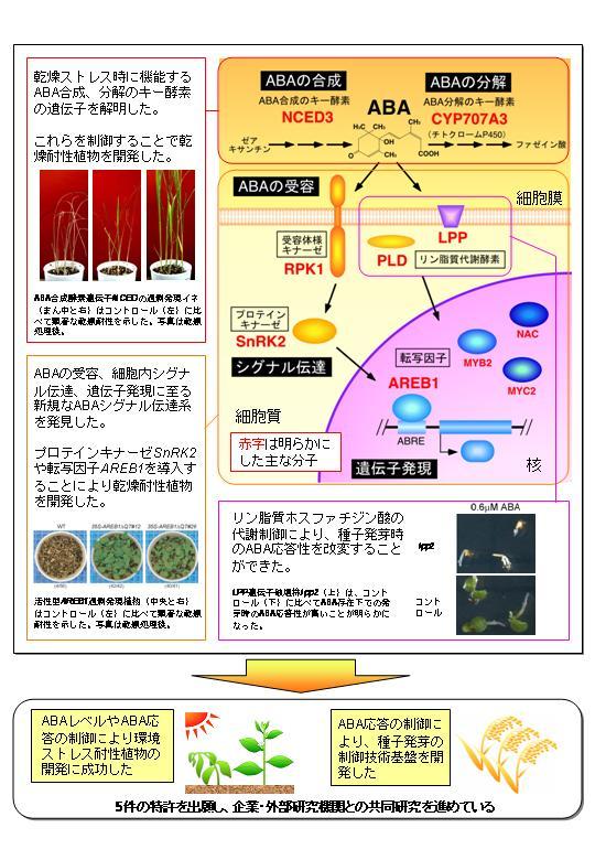 生物系特定産業技術研究支援セン...