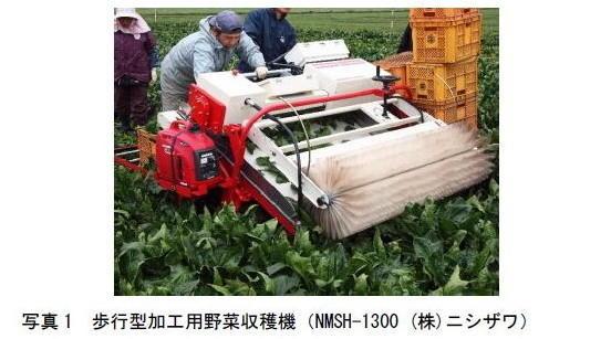 写真1 歩行型加工用野菜収穫機(NMSH-1300 (株)ニシザワ)