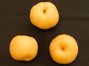 「ほしあかり」の果実