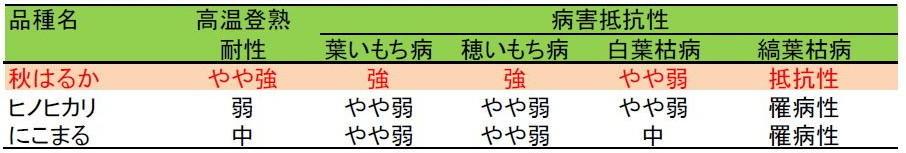 表1 「秋はるか」の高温登熟耐性と病害抵抗性