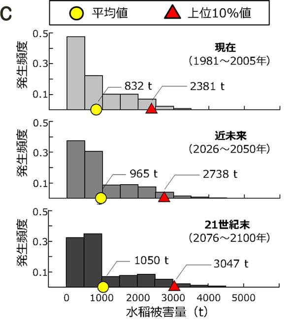 図2グラフC