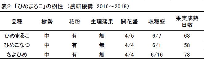 表2 「ひめまるこ」の樹性 (農研機構 2016~2018)。品種、樹勢、花粉、生理落果、開花盛、収穫盛、果実成熟日数の順にひめまるこ、中、有、無、4/5、6/7、63。ひめこなつ、中、有、無、4/4、6/1、58。ちよひめ、中、有、無、4/4、6/16、73。