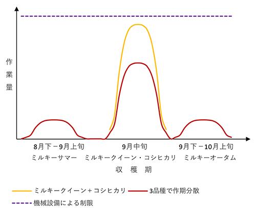図2 複数品種導入による作期競合回避のイメージ